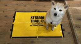 Streamtrail FISH & DOG Sheet