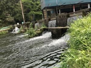 須川フィッシングパーク